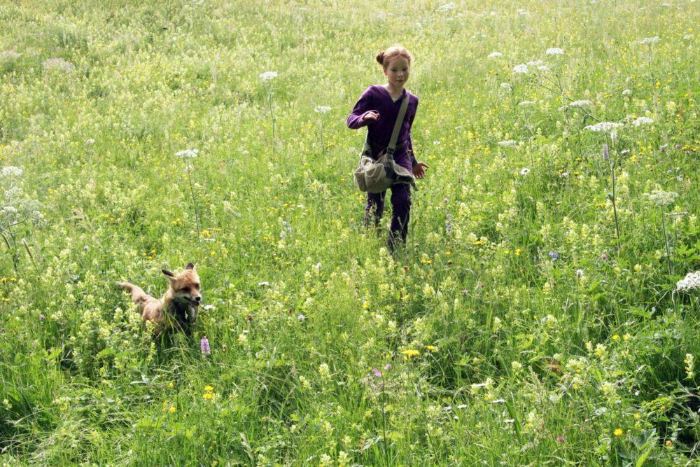 Девочка и лисенок